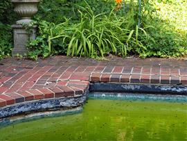 Steve Greene broke-ass pool