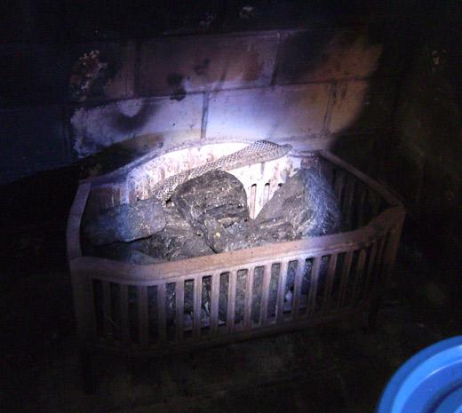 snakeskin in fireplace